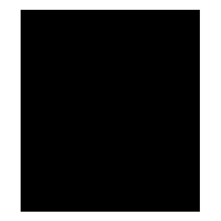 skoda2